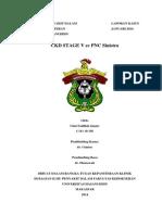 Ulmi Fadillah, S.Ked - Laporan Kasus Ckd Ec Pnc Sinistra