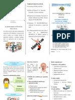 TRIPTICO DE ACUSTICA.pdf