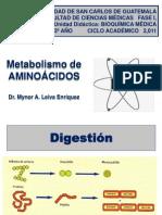 Metabolismo de AA.pdf