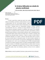O emprego de técnicas hifenadas no estudo de plantas medicinais