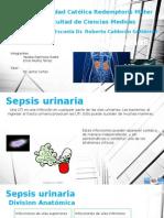 Sepsis Urinaria