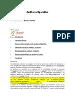 Qué Es La Auditoría Operativa (2)
