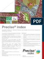 Preciso Index (eng)
