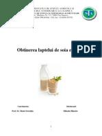 Obtinerea Laptelui de Soia Ecologic 2010