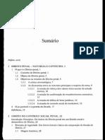 Paulo Cesar Busato - Direito penal.pdf