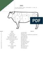Anatomia Das Peças Carnes