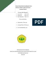 Laporan Praktikum Farmaseutik i