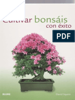 Como cultivar bonsáis con exito