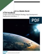 App Dev CIO HandBook Final