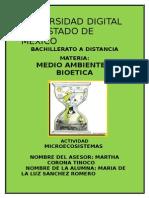 20913_MICROECOSISTEMAS_MARIA_DE_LA_LUZ_SANCHEZ_ROMERO_MyB.docx