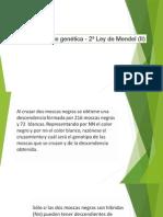 Problemas de Genética - 2ª Ley de Mendel (II)