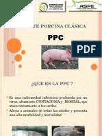 Peste Porcina Clásica
