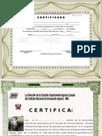 Certificado de Manera Horizontal