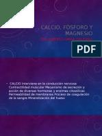 Calcio, Fósforo y Magnesio.pptx
