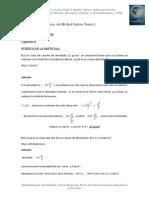 Soluciones a Los Problemas de La Fisica de Michel Valero- Cap 8 Estatica de La Particula
