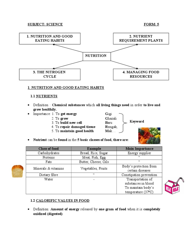 Food Science And Nutrition Definition