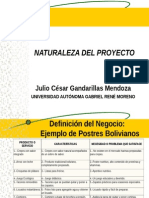 Naturaleza Del Proyecto -