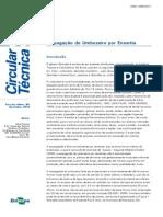 circular_96.pdf