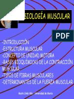 fisiomusclar1.pdf