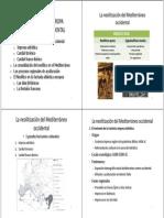 Tema 3.2 El Neolitico en La Europa Atlantica y Mediterranea