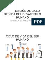 Ciclo de Vida Del Desarrollo Humano