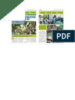 DEVIDA-Desarrollo productivo