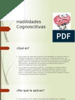 Habilidades Cognoscitivas1