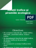 Prezentare Relatii Trofice Si Piramide Ecologice