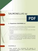 15. SALMONELLAS sp.pptx