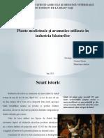 Proiect Plante aromatice si medicinale in bauturi