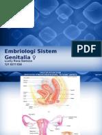 RPS - Embriologi Sistem Reproduksi