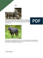 10 flora dan fauna langka.docx