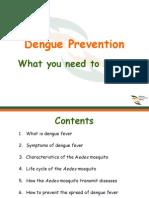 Dengue and Prevention