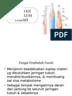 fisiologi pembuluhdarah