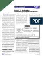 Ley General de Sociedades 08Dic2007