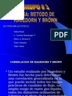 Correlacion de Hagedorn y Brown