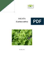 salataSM-1.pdf