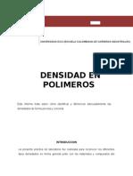 Laboratorio densidad de polimeros