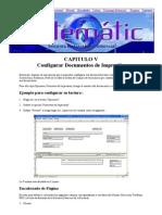 Manual de Sistematic - CAPITULO V