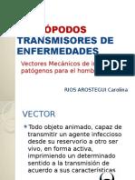 ARtropodos transmision de enfermedades