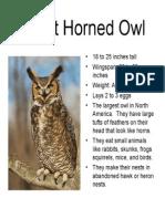 owlresearch2006