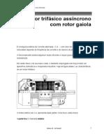 65118972A03_MotorTrifasicoAssincronoComRotorGaiola
