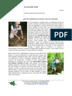 Felidwork With Rede Verde (Portuguese)
