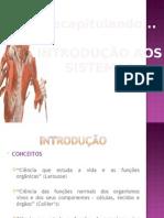 INTRODUCAO-AOS SISTEMAS-FISIOLOGIA-HUMANA.pptx