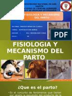 Fisiologia y Mecanismo Del Parto
