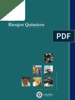 GUÌA DE RIESGOS QUIMICOS