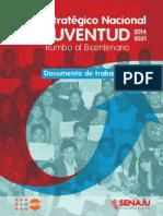 Plan Nacional Juventud Documento Trabajo