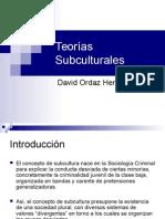Teorías Subculturales