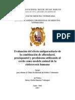 Documento Posible Tesis