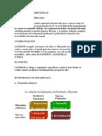 Estrategias Competitivas,Desarrollo y Mkt Internacional